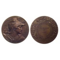 Medalja 1921.  Francuska