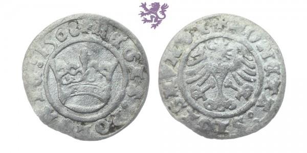 1/2 Grosz, Sigismund I, 1508.
